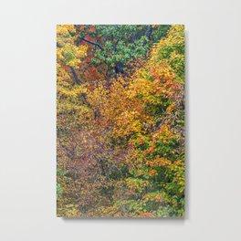 display of color Metal Print