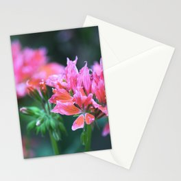Longwood Gardens Autumn Series 237 Stationery Cards