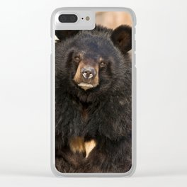 Asian Black Bear Clear iPhone Case