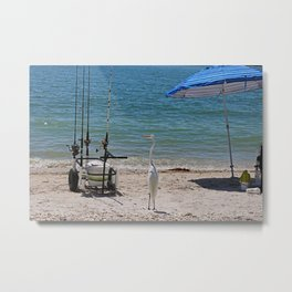 Checking Things Out Metal Print