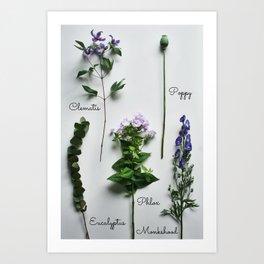 Botanical photography, purple summer flowers Art Print