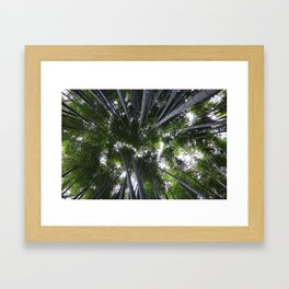 Bamboo Forest Framed Art Print