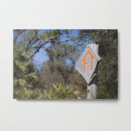 Florida Trail in Winter (unrecognizable weather in Florida) Metal Print