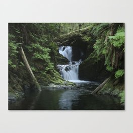 Quinault Falls Rain Forest Canvas Print