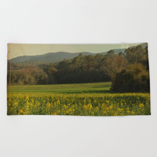 Once Upon a Time a Field of Flowers Beach Towel
