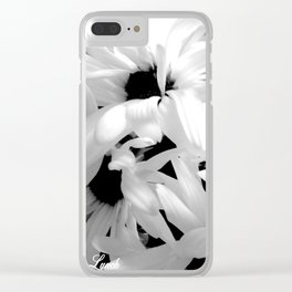 Shasta Daisies In The Light Clear iPhone Case