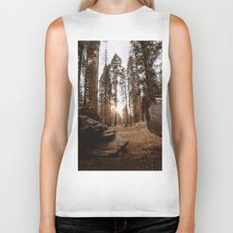 Light Between Fallen Sequoias Biker Tank
