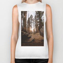 Light Between Fallen Sequoias Biker Tank