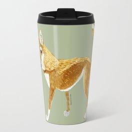 Ginger dingo (Canis lupus dingo) (c)2017 Travel Mug