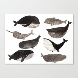 Black and white whales Canvas Print