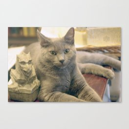 Hodge and Gargoyle Canvas Print