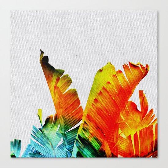 Enchanted Banana Leaves Canvas Print