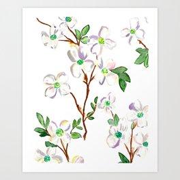 Dogwoods Art Print