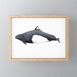 Dall´s porpoise Framed Mini Art Print