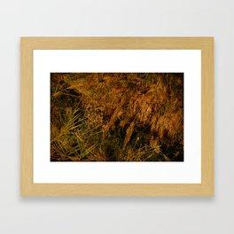 romantic texture vintage Framed Art Print