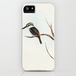 Red-backed Halcyon (Halcyon pyrrhopygia) illustrated by Elizabeth Gould (1804–1841) for John Gould's iPhone Case