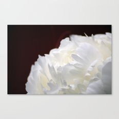 Peony Close Up Canvas Print