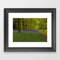 Bluebell Wood Walkway Framed Art Print