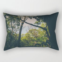 A frame within a frame Rectangular Pillow
