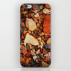 The Walk Through The Colored Stones  iPhone & iPod Skin