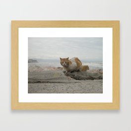 Braving the weather... Framed Art Print