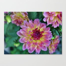 Beauty In The Garden Canvas Print