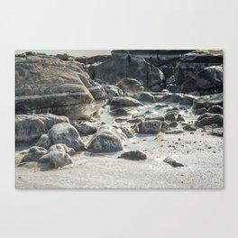 Ice Beach Winter Island Salem MA Canvas Print