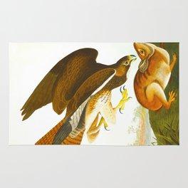 Common Buzzard Bird Rug