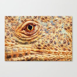 IGUANA ABSTRACT Canvas Print