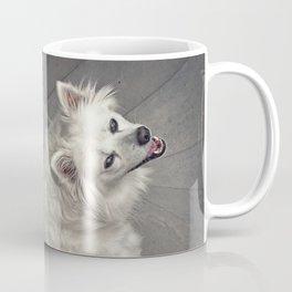 Sly Fox Coffee Mug