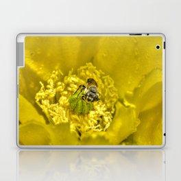 Rainy Day Cactus Flower Bee Laptop & iPad Skin