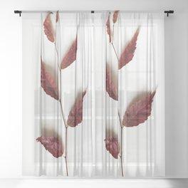 Twig of Autumn Sheer Curtain