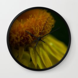 Like a Daffodil Wall Clock