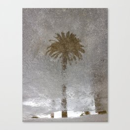 Rainy Day Palm Tree Canvas Print