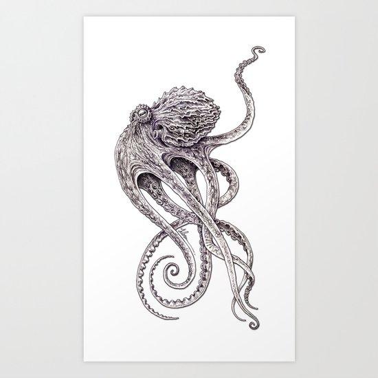 Cephalopod Art Print