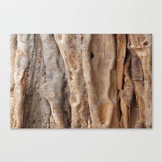 Wood Texture 9311 Canvas Print