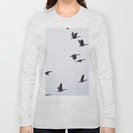 Birds -Scandinavian Minimalist Art Long Sleeve T-shirt