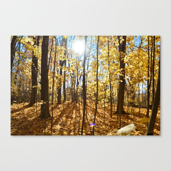 Bright fall day Canvas Print