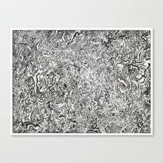 Hidden Universe Canvas Print