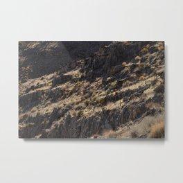 Natural Terrace Mojave Metal Print