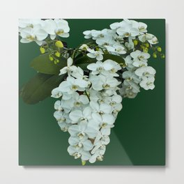 Orchids on the Green Metal Print