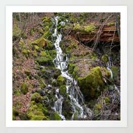 Flowing Spring down the mountainside... Art Print