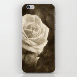 Pink Roses in Anzures 1 Antiqued iPhone Skin