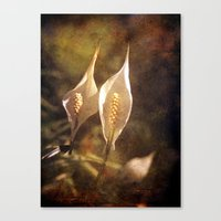twins Canvas Prints featuring twins by Angela Bruno