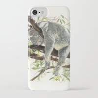 koala iPhone & iPod Cases featuring Koala by Patrizia Donaera ILLUSTRATIONS