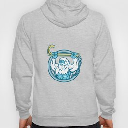 Yeti Lifting J Hook Circle Retro Hoody