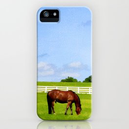 Summer Grazing iPhone Case