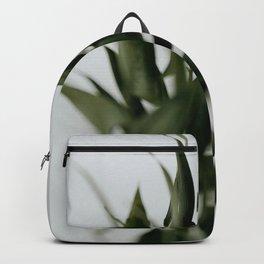 Fern | 1 Backpack