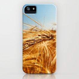 treasures of summer iPhone Case