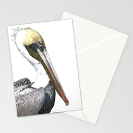 Pelican Portrait Stationery Cards
